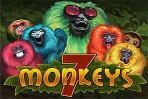 7monkeys