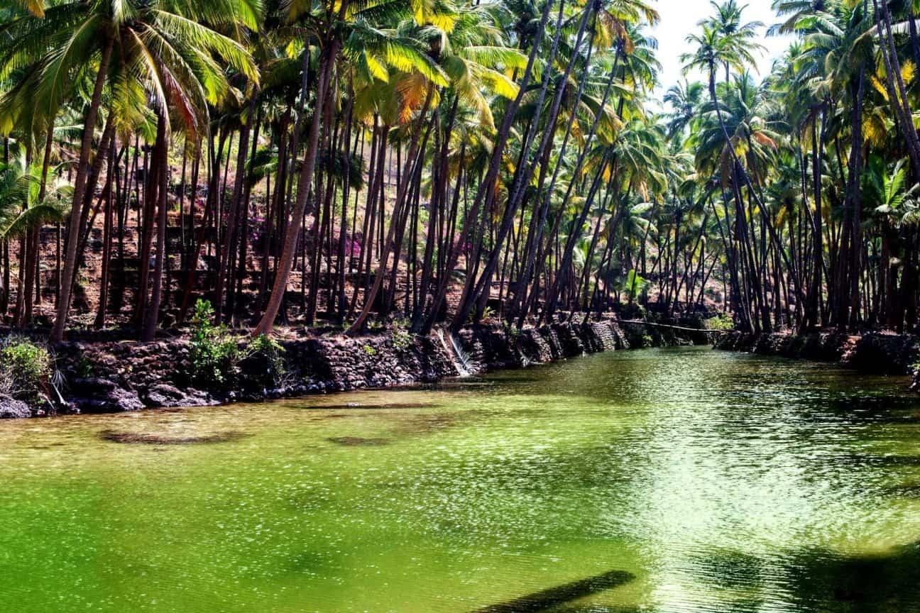 Goa: Beaches be Gambling
