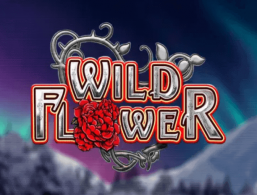 Play for Free: Wild Flower slot